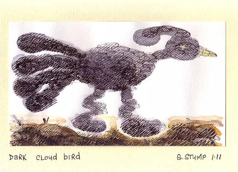 Dark cloud bird
