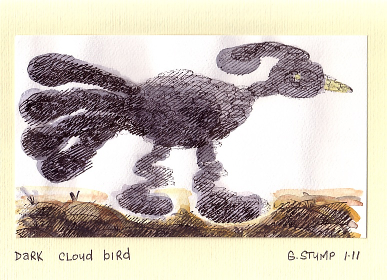 Dark cloud bird